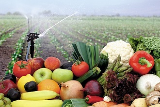 Vegetable Farming Course Online.