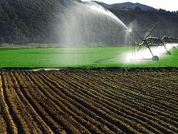 Irrigation for Crops Course