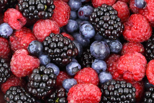 Berry Course