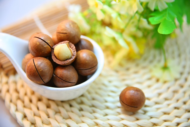 Cool Climate Nut Growing Course