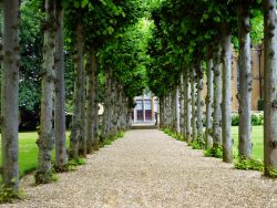 Garden History Course Online